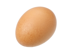 Egg, isolated
