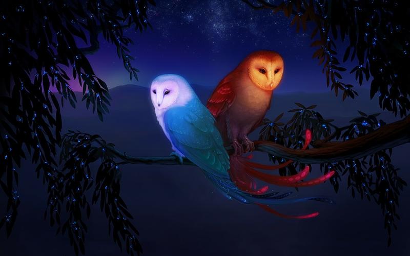 fantasy night moon fantasy art the sun owls digital art 1683x1050 wallpaper_www.wallpaperhi.com_75